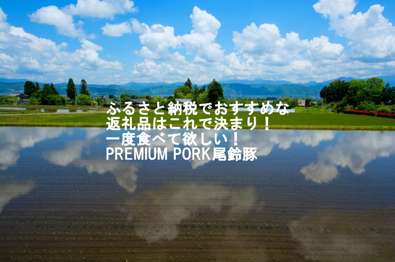 楽天ユーザーにお勧め!PREMIUM PORK 尾鈴豚 「ふるさと納税」おすずとん