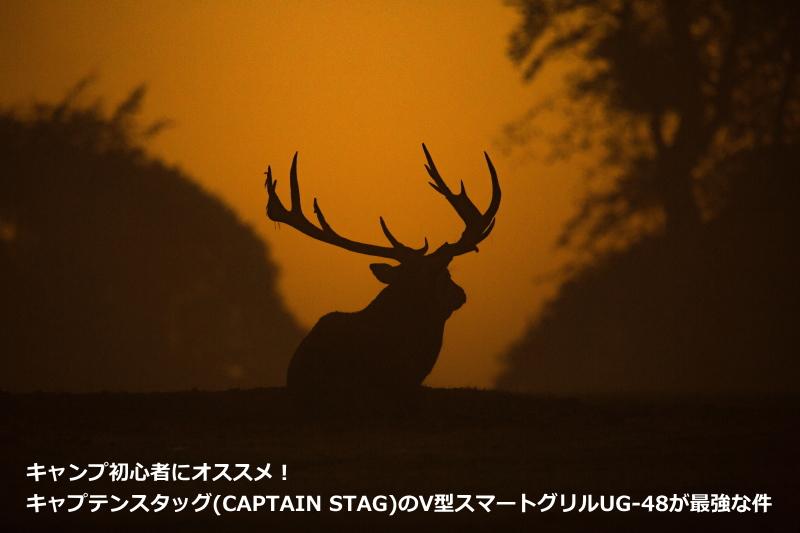 キャンプ初心者にオススメ!キャプテンスタッグ(CAPTAIN STAG)のV型スマートグリルUG-48が最強な件