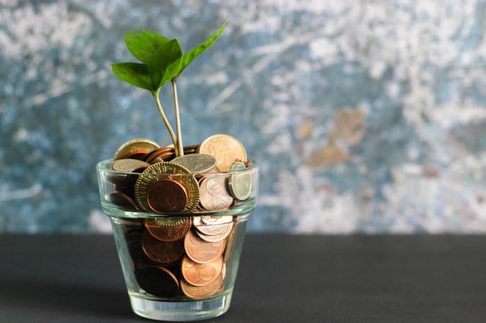 「ネオモバ」 なら少ない資金からでも投資をスタートできる